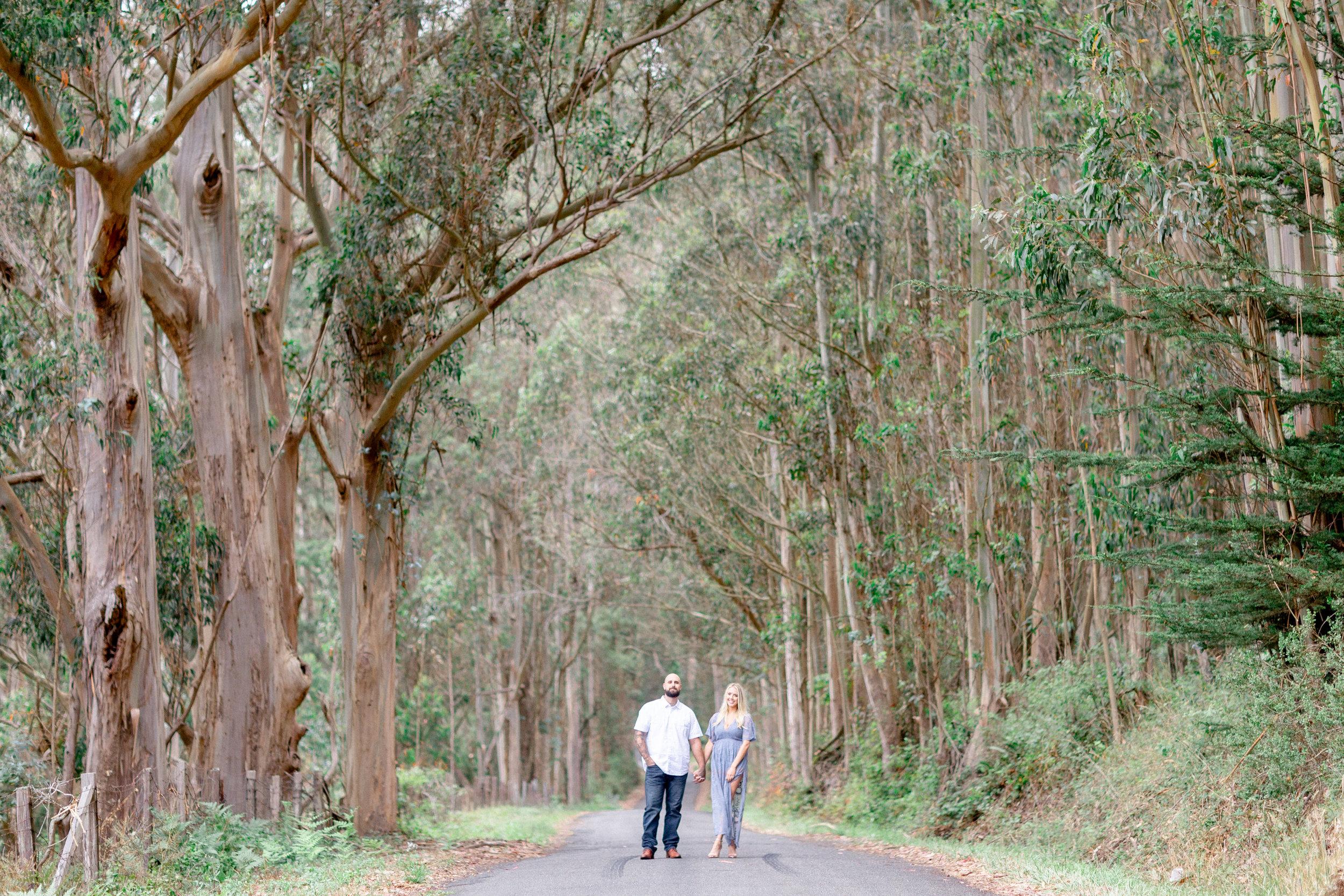 146Bodega-Bay-Engagement-Photographer (70 of).jpg