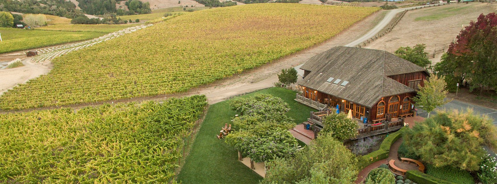the Navarro Vineyards tasting room sits among vineyards