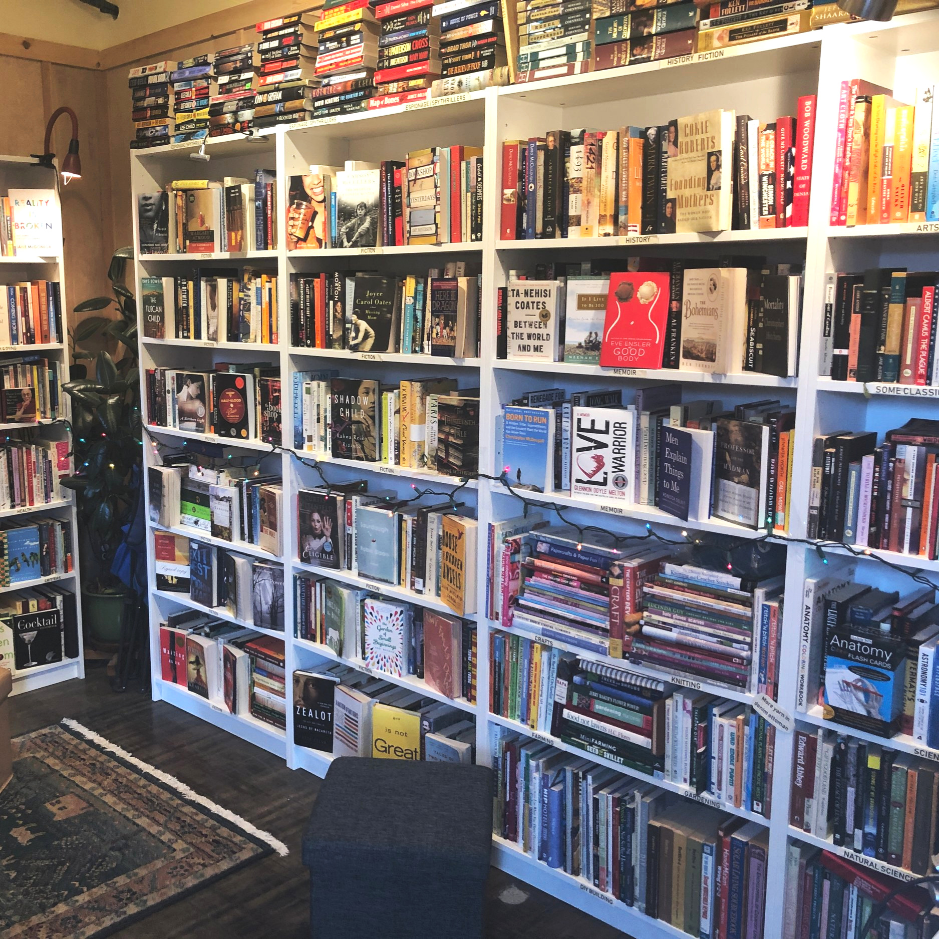 full bookshelves in Boonville's book-lover destination, Hedgehog Books