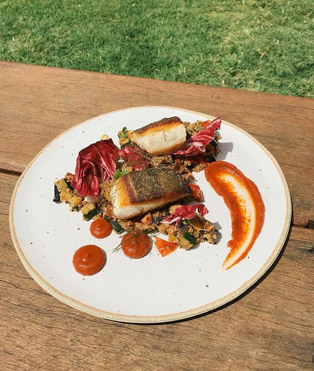 This week's market fish fit for a king (or queen, or anyone really!). Kingfish with bourghal and ratatouille salad, red capsicum purée and garlic crisps. 👑 🐟