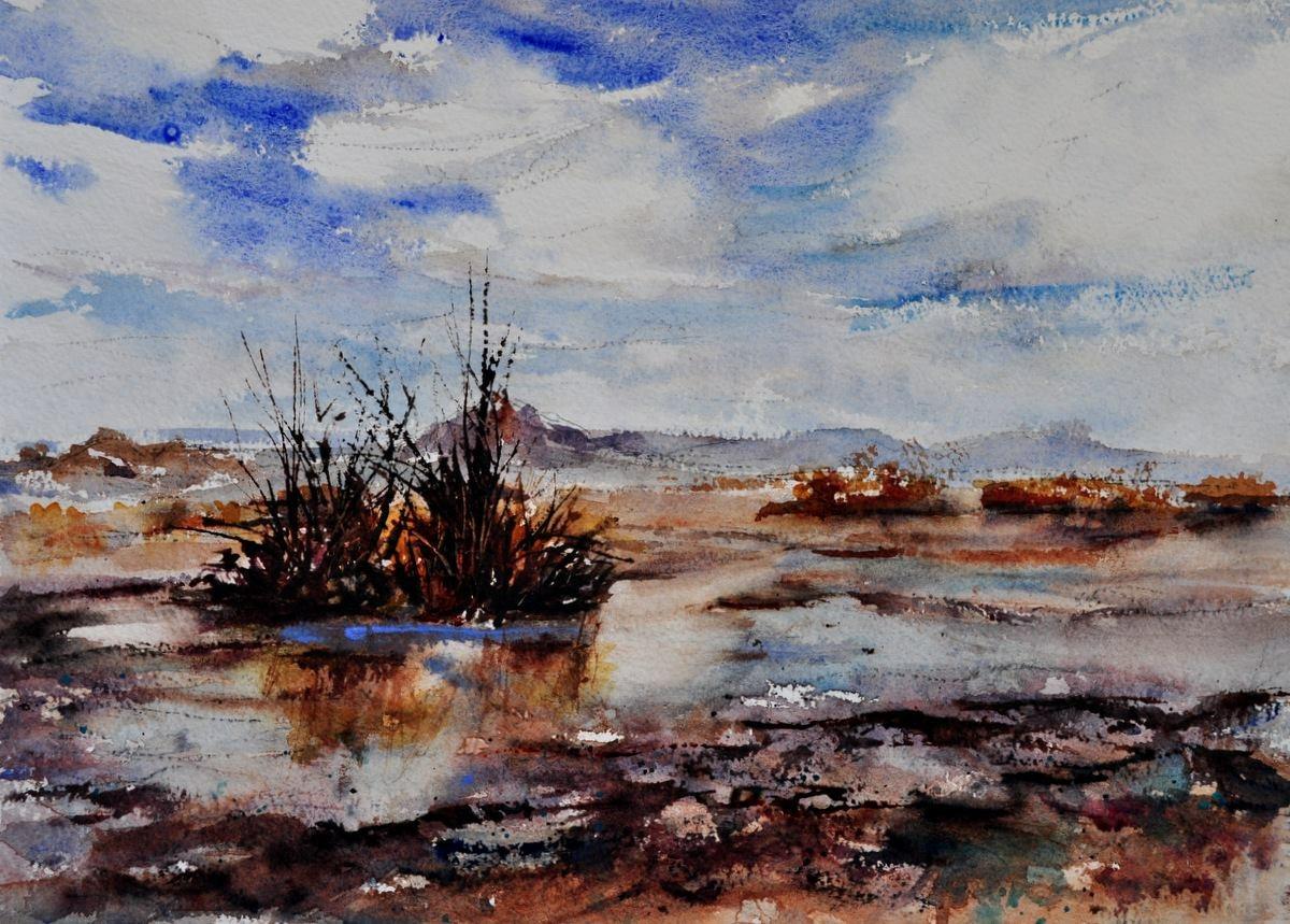 Desert Rain, Sold
