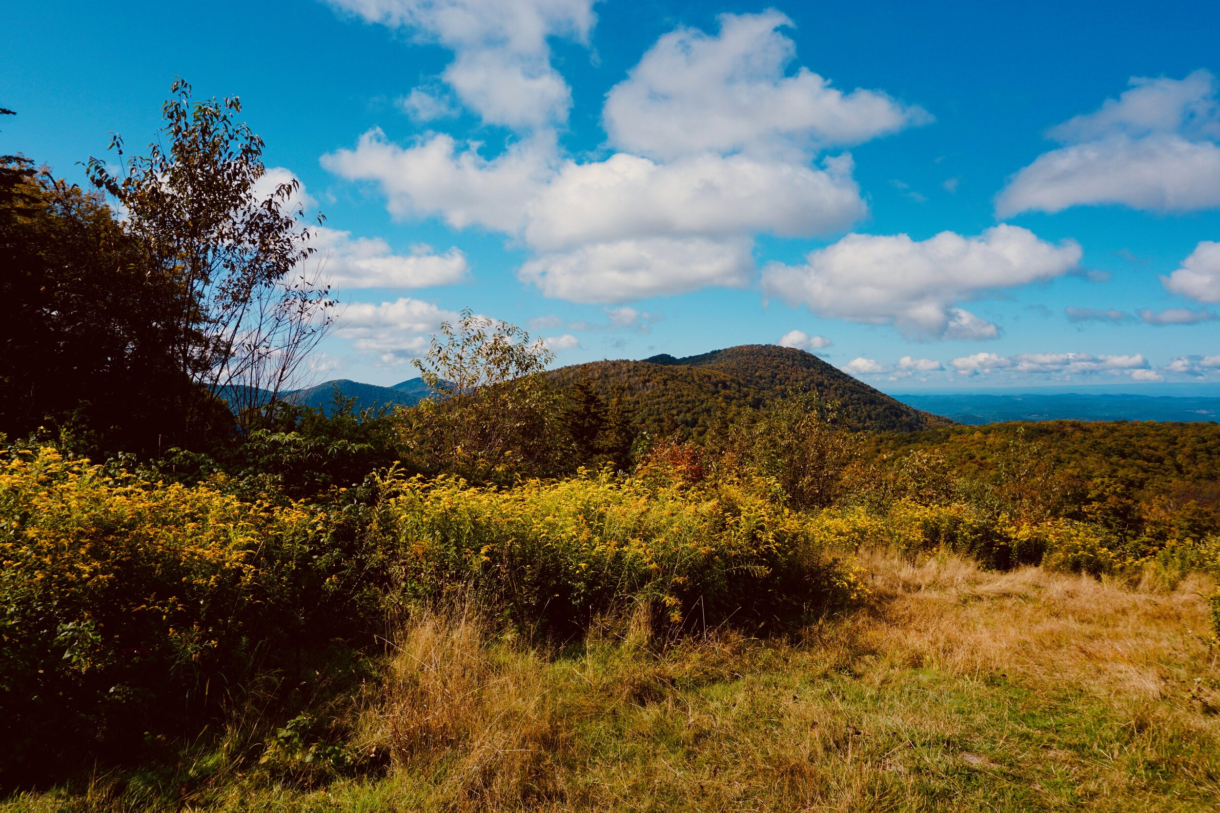 Photos by Sarah Krinsky at Viewpoint Cabin, Merck Forest and Farmland Center, Rupert VT