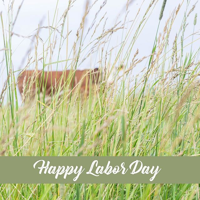 Wishing you a wonderful Labor Day! Hoping you had a three day weekend full of fun, friends, and memories that last a lifetime.