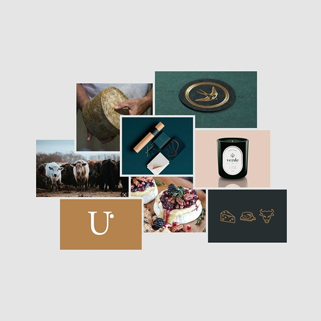 Whatever type of creative you need, whether it's a branding project, website or marketing collateral a moodboard will steer your project in the right direction. Just hit the link in our bio for more on our blog.⠀⠀⠀⠀⠀⠀⠀⠀⠀ .⠀⠀⠀⠀⠀⠀⠀⠀⠀ .⠀⠀⠀⠀⠀⠀⠀⠀⠀ .⠀⠀⠀⠀⠀⠀⠀⠀⠀ .⠀⠀⠀⠀⠀⠀⠀⠀⠀ .⠀⠀⠀⠀⠀⠀⠀⠀⠀ #branding #brandingagency #graphicdesign #sydneygraphicdesigner #sydneygraphicdesign #entrepreneur #creativeagency #business #shoplocal #designinspiration #smallbusiness #pantone #sydney #sydneydesign #supportsmallbusiness #colours #colour #female # #brandidentity #websitedesign #squarespace #graphidesignwork #freelancedesigner #freelancedesign #graphicdesignsydney #graphicdesigneraustralia #graphicdesignaud #wemakebrandsmagical #potioncreative