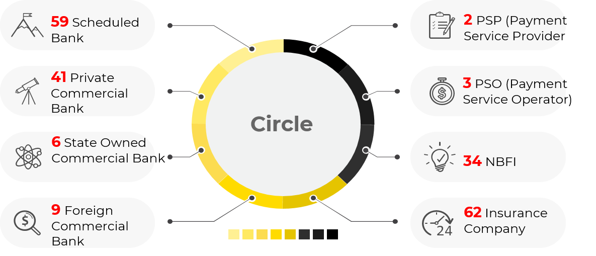 Digital Financial Services — Circle FinTech Ltd
