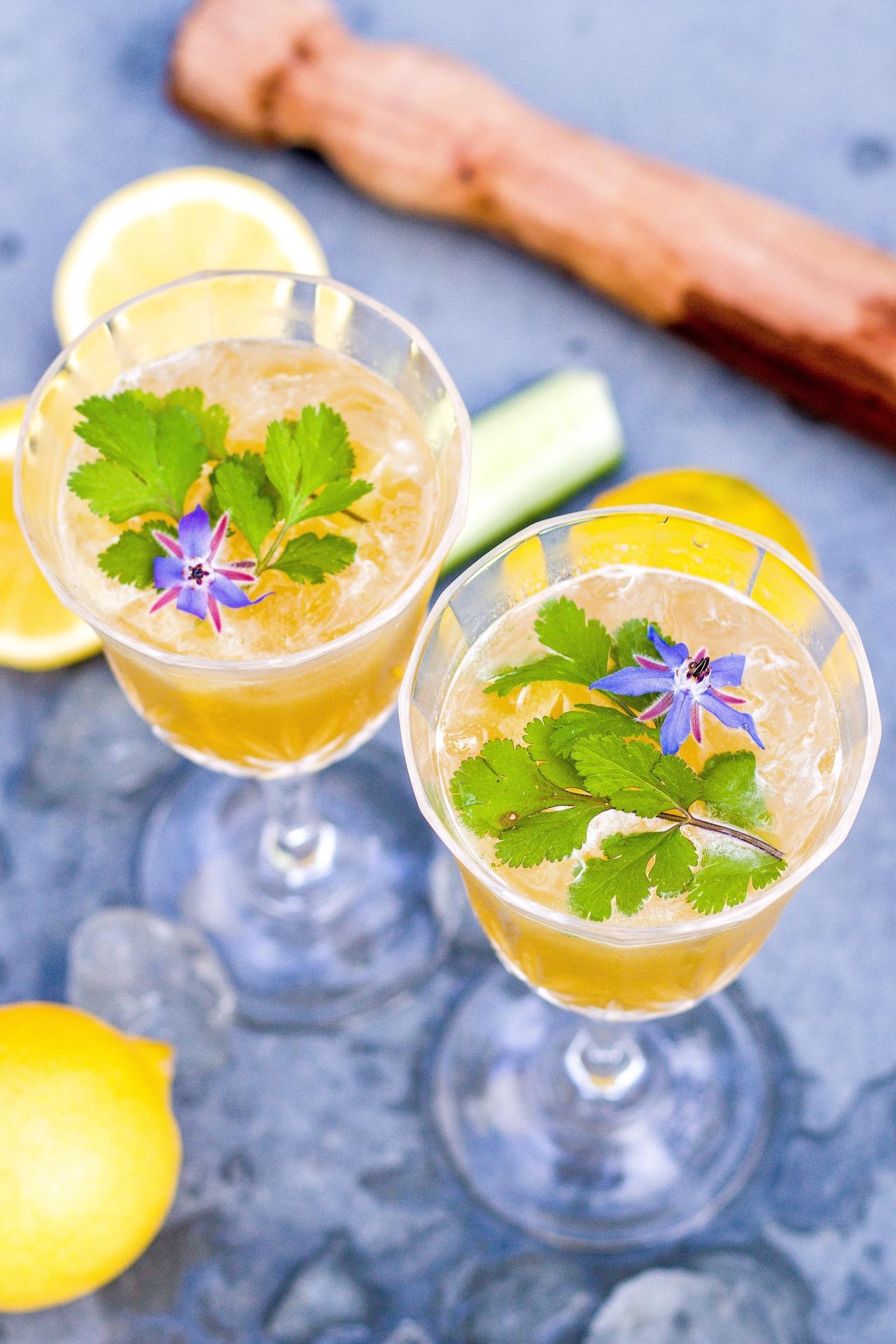 Erfrischender Martini aus Gurke und Koriander. Ideal zu asiatischen oder mexikanisch angehauchten Speisen.  #cocktail #drink