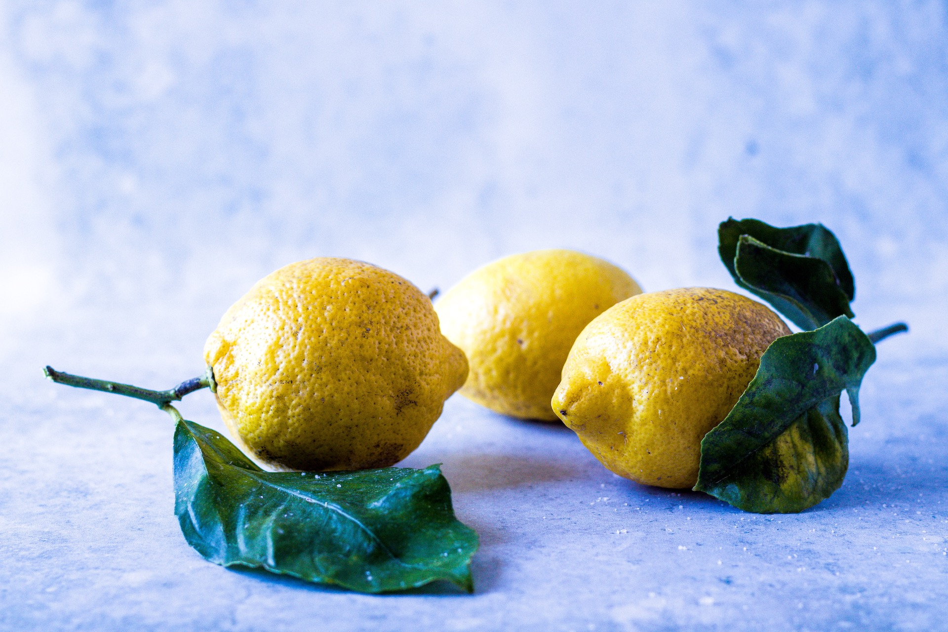 Rezept für marokkanische Salzzitronen mit Lorbeer. #einmachen #salzzitronen #zitronen #fermente #marokko