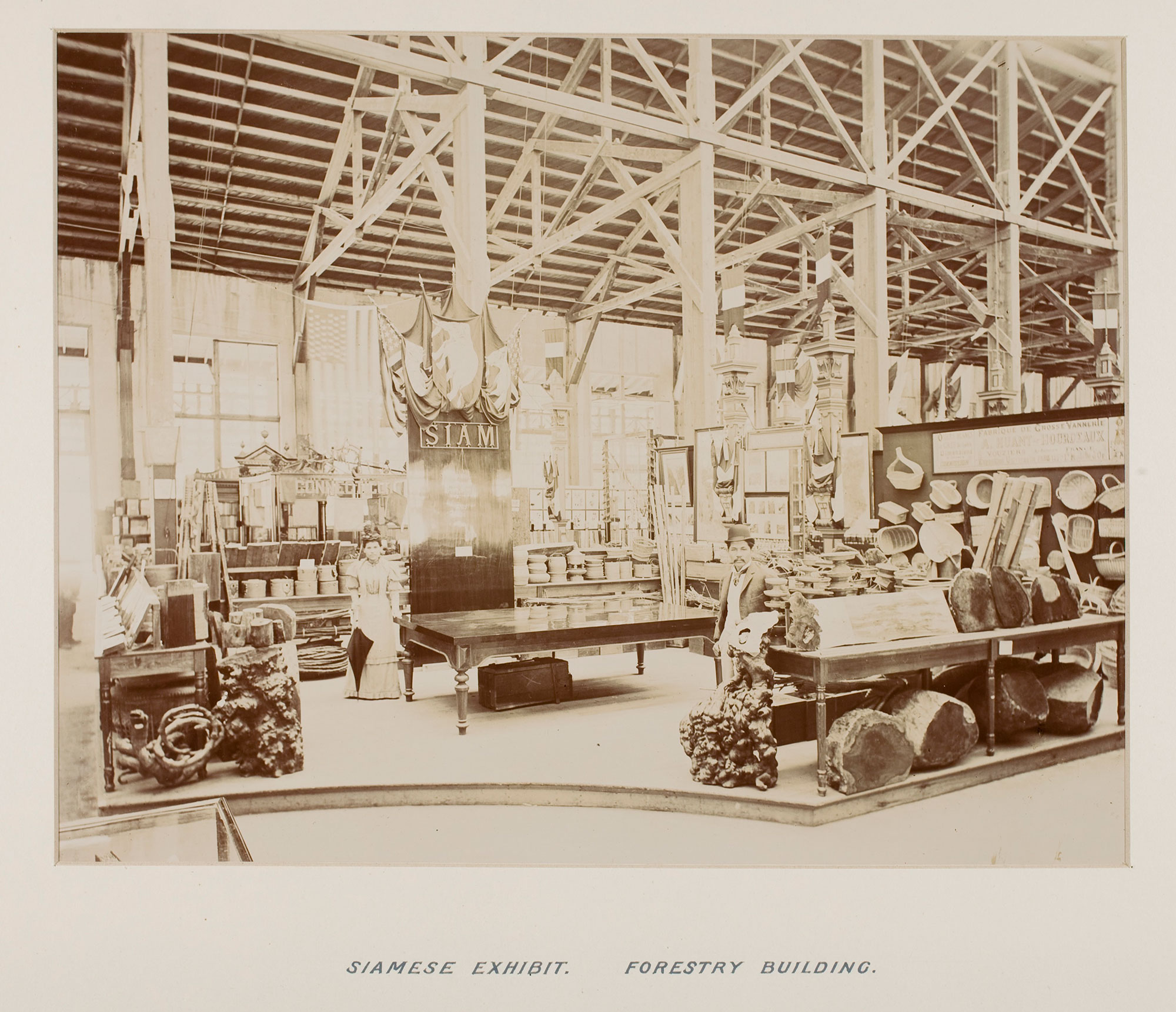 Forestry Building exhibit at the World's Columbian Exposition, 1893, Chicago, Illinois  นิทรรศการภายในอาคารจัดแสดง Forestry Building ในงาน World's Columbian Exposition พ.ศ. 2436 ณ เมืองชิคาโก รัฐอิลลินอยส์