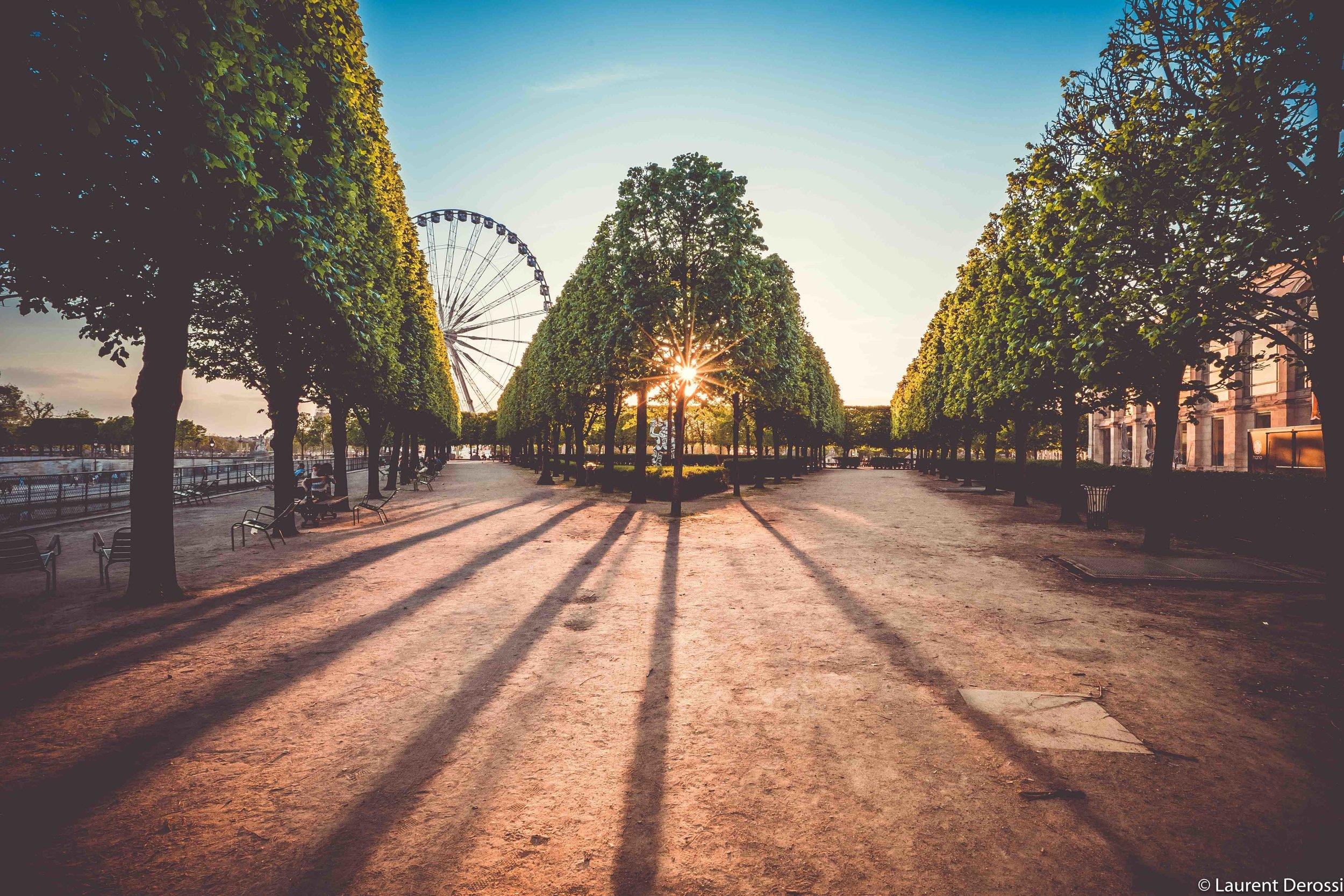 Paris-sunset-tuileries.jpg