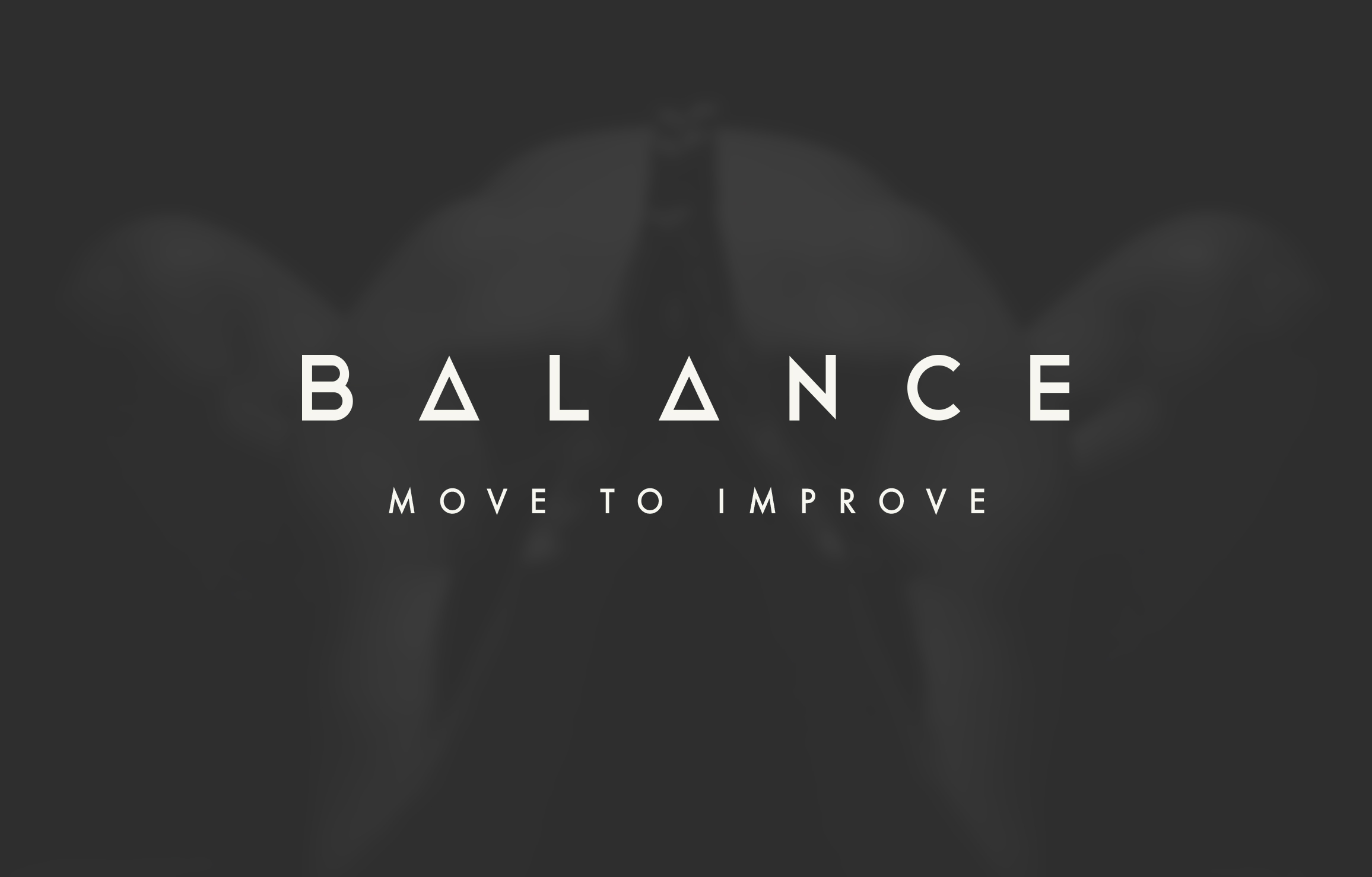 the-balance-group-7.jpg