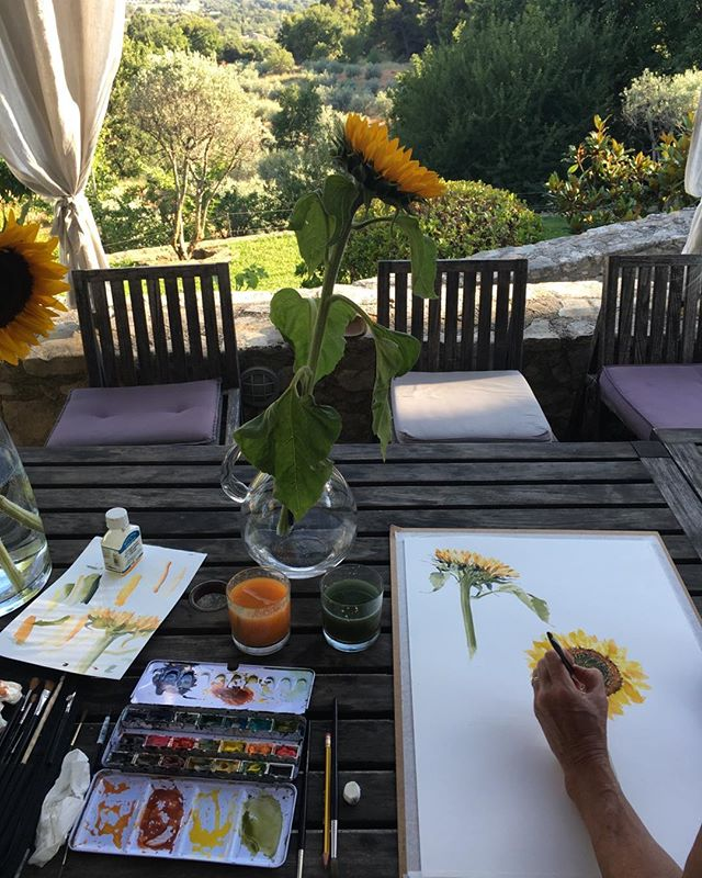 Painting sunflowers in France. This is the beautiful house, Les Vadons, where we stay in the Luberon. We thinks it's ours while we are here, as we having been coming for 15 years since the children were very small. It is very hard to know what to paint as the whole area is so stunning! But I've been sneaking away from the pool and games and family fun for a couple of hours everyday to paint. #luberon#les vadons#flowers#watercolour#holidays#painting#bliss!