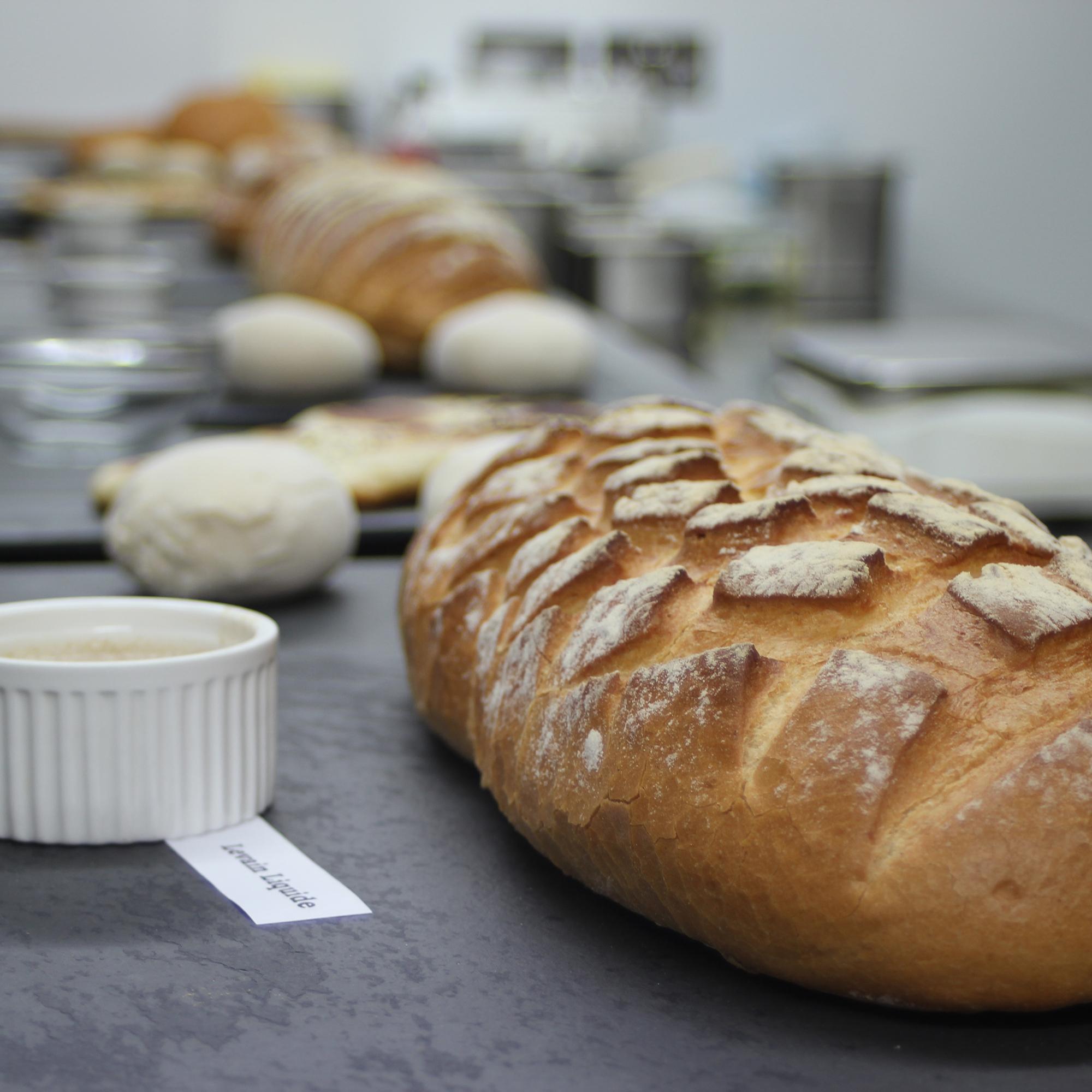PanArt_breads.jpg