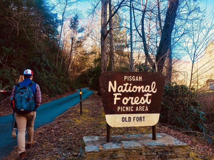 Pisgah National Forest, Old Fort, North Carolina