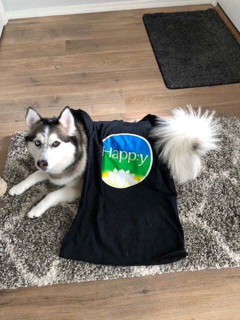 Happy Dog 2.jpg