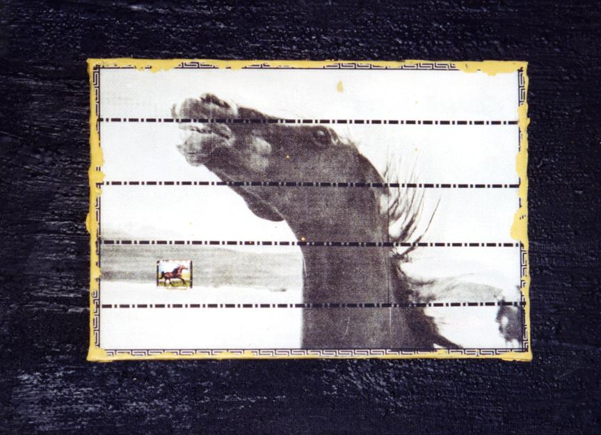 horse in the desert.jpg