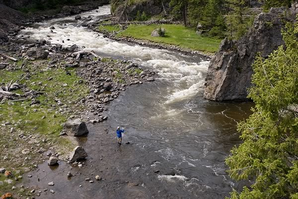 The Firehole River in Yellowstone National Park.
