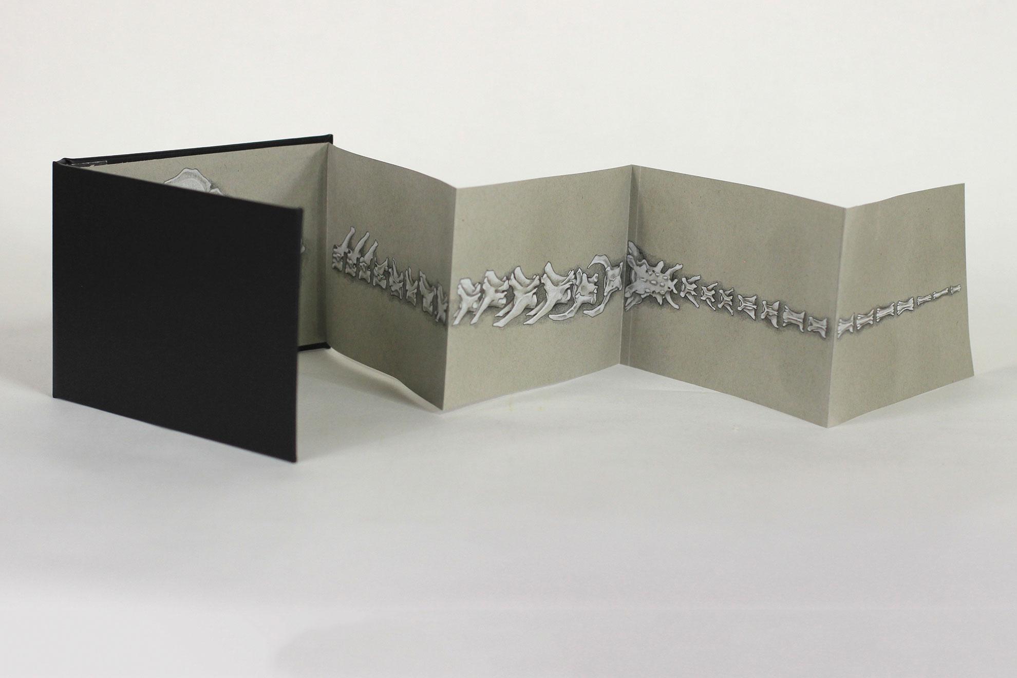 Sam Adkins, Head to Tail, Colored pencil, 2018, $150, Kalamazoo, MI