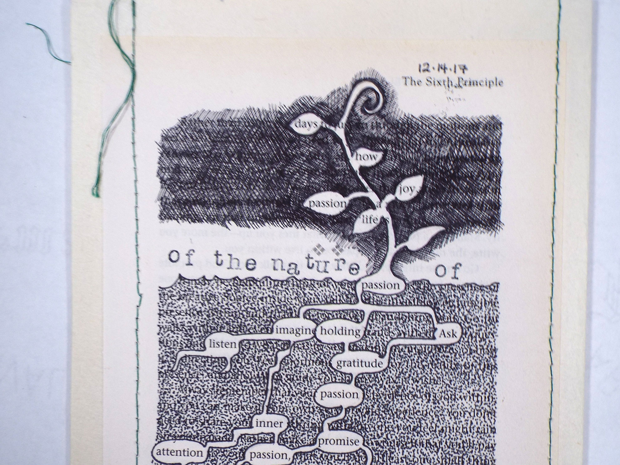 Debra Eck, The Nature of a Seed, Found Altered Text, Kochi Paper, Thread	2018, $300, Jamestown, NY