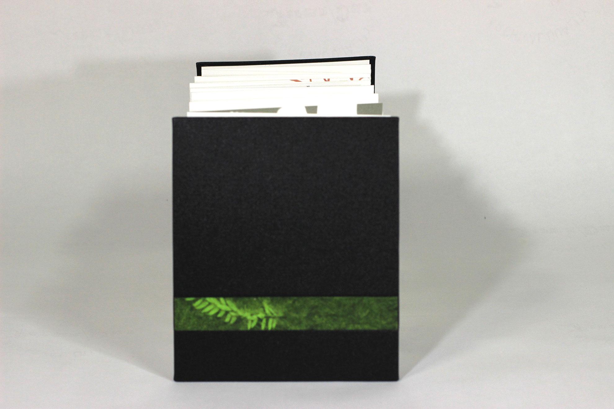 Avril Makula, Green, Pigment Inks, Stonehenge, Bookcloth, 2018, $200, Leichhardt, Australia