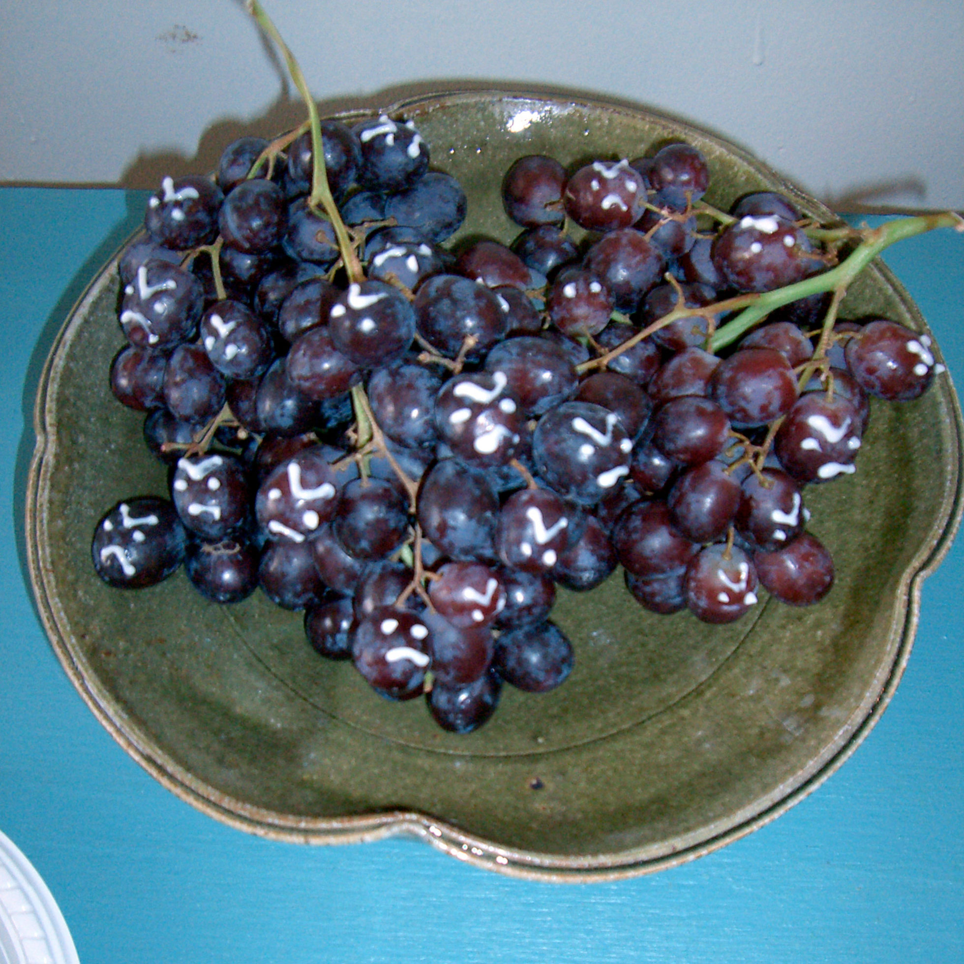 """""""The Grapes of Wrath"""" by Elizabeth King; 2006 Edible Book Festival entry"""