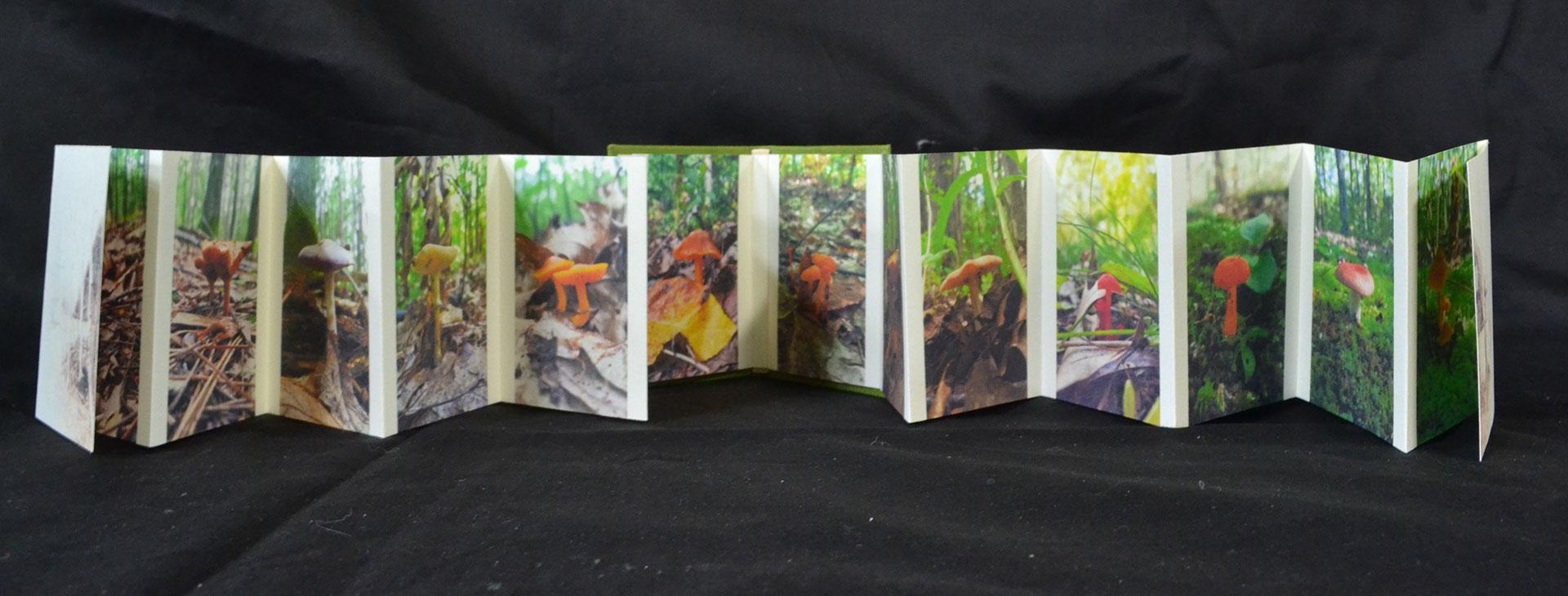 Erin K Schmidt, House in the Wood, Stratmore 130gsm, inkjet printed, wood, hemp, 2015, $20, Rochester Hills, MI