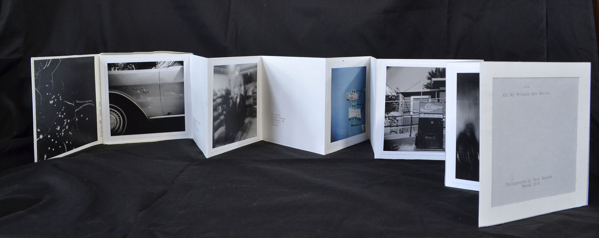 Rose Swartz, All My Friends Are Ghosts, Silver Gelatin Prints, C-prints, paper, vellum, 2016