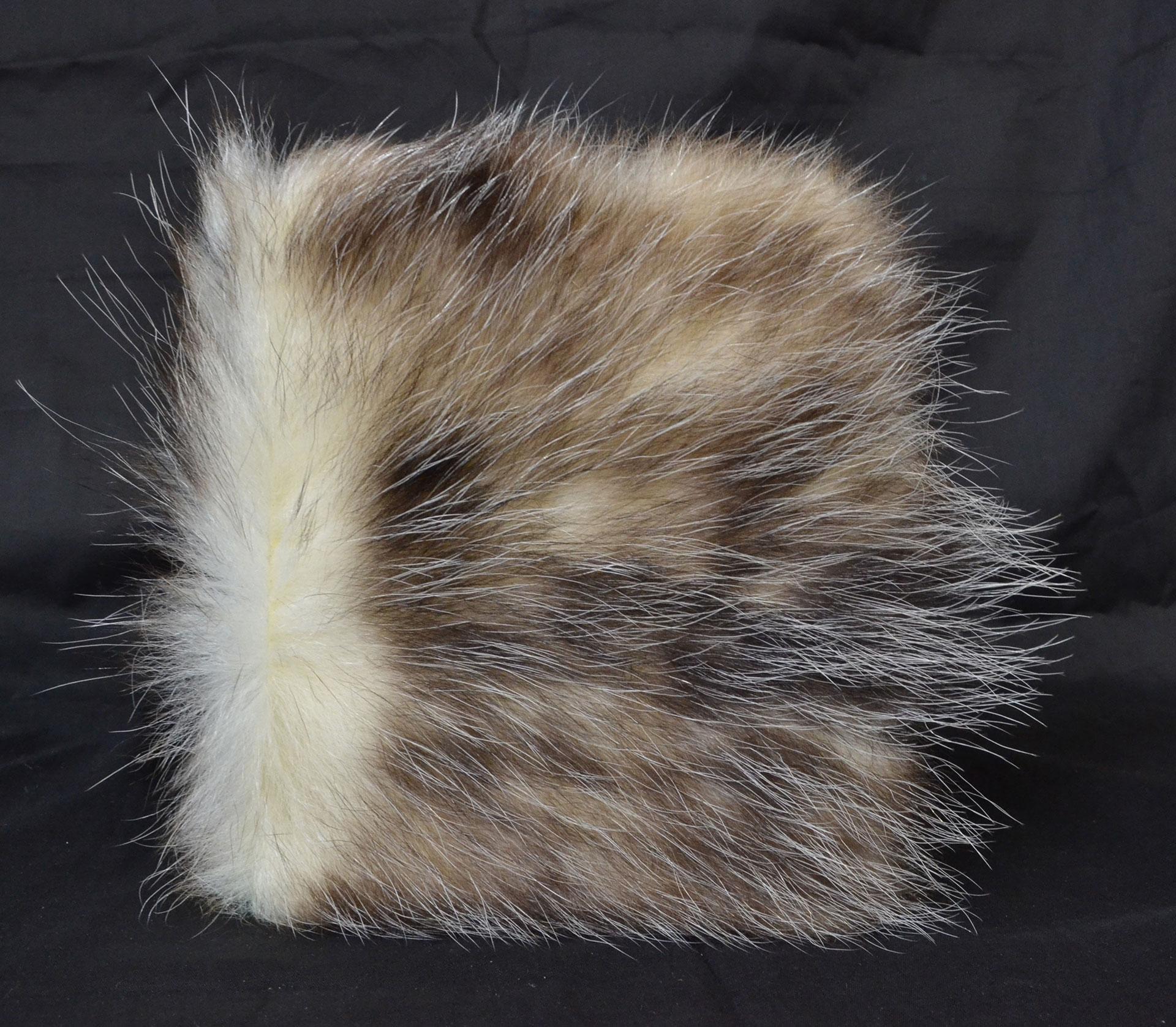 Madeline Craft, untitled, Graphite, Opossum Fur, 2016, Kalamazoo, MI