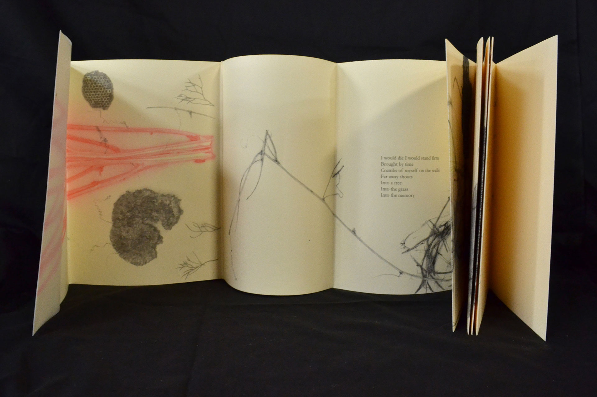 Melania Lanzini, Adagio, Risograph, monotype, drawings 2016, $250, Florence, IT