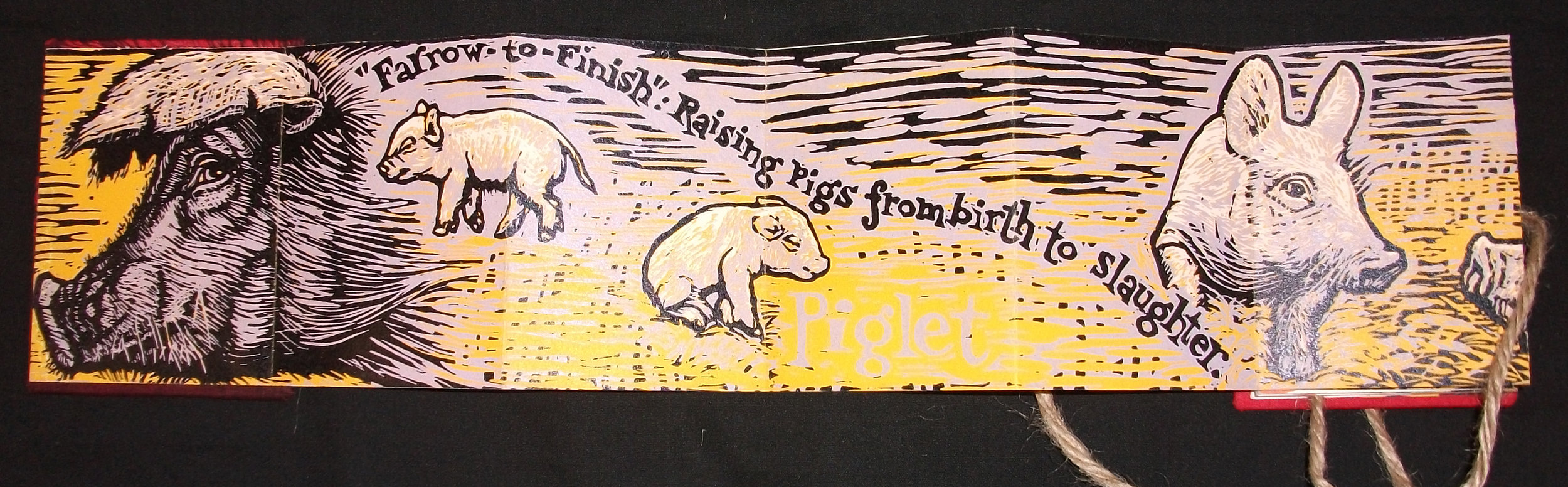 SV Medaris,  Pig, Hog, Bacon,  Reductions Woodcut on Somerset & bookcloth, 2011, Mt Horeb, WI