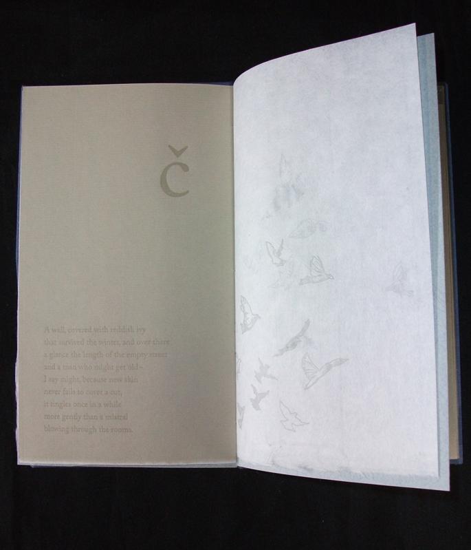 Sara Parkel, Text by Aies Debeljak, translation by Author and Andrew Zawacki, Sliver of Salt, Letterpress, Polymer plates, Reduction Linoleum Cut, Salt Soaked Covers, 2008