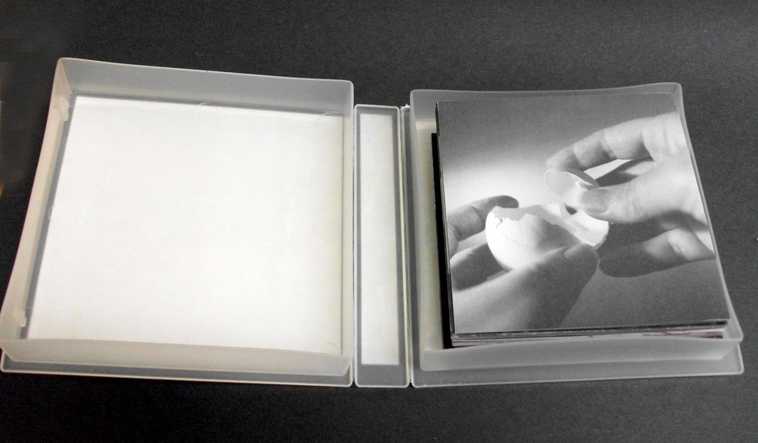 Bea Nettles, Seasonal Turns, Four Accordion Books Offset Printing 1998