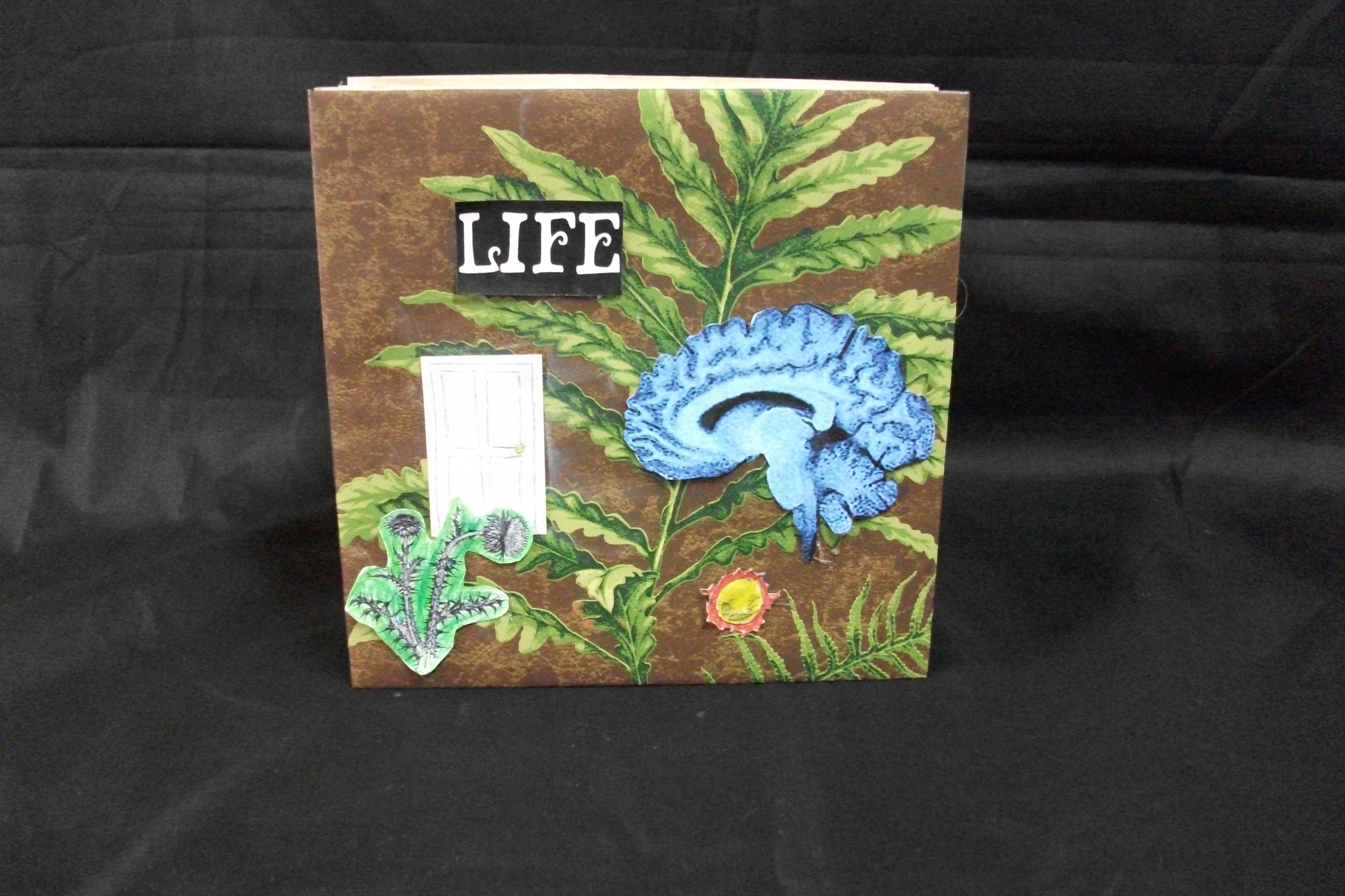 Matthew Stanbury, Life, paper, board, graphite, pastel, Prismacolor, 2010