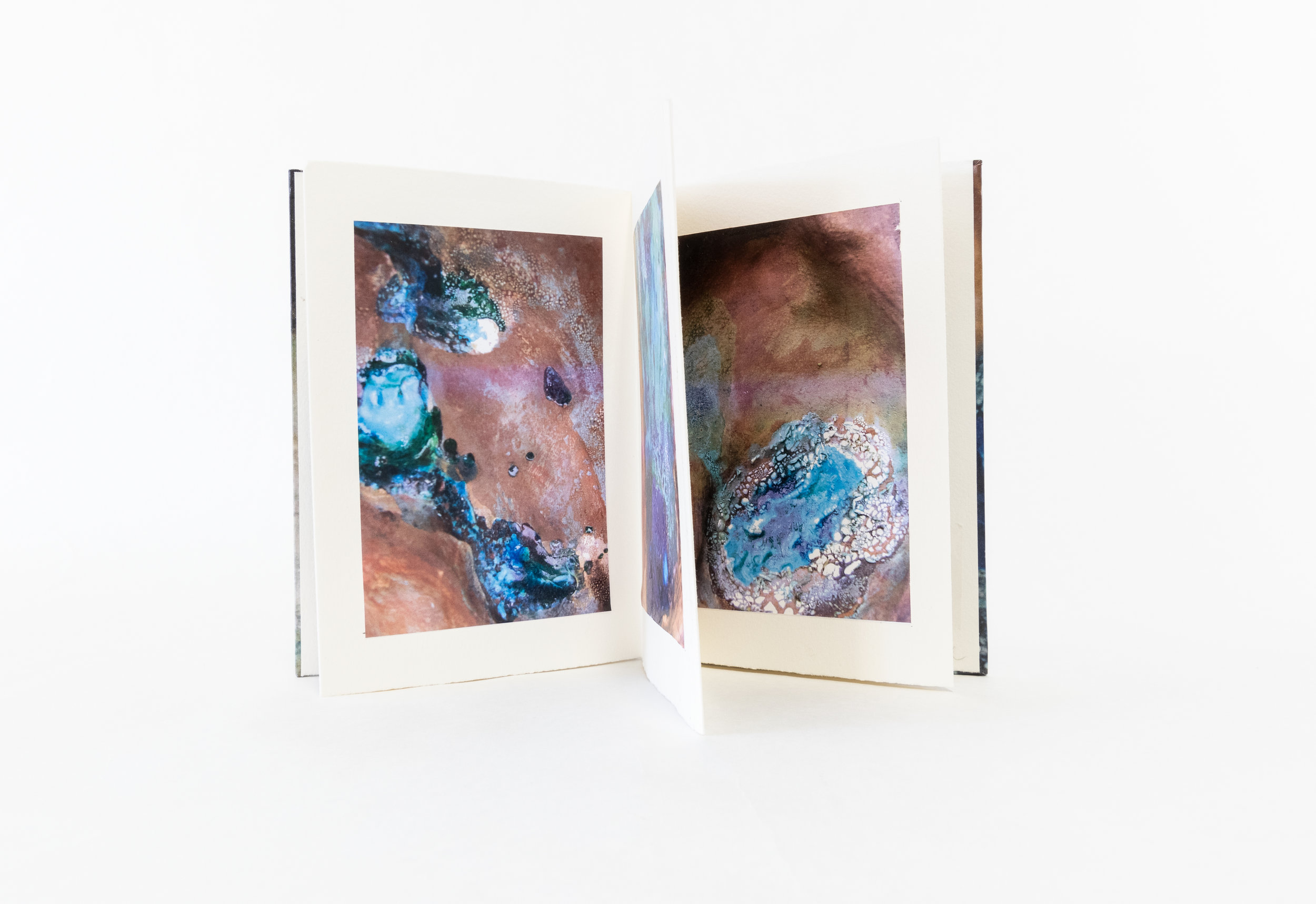 "Sandi Lent, ""Oasis,"" Artist Book/Photography, 2018, $125, Boynton Beach, FL"