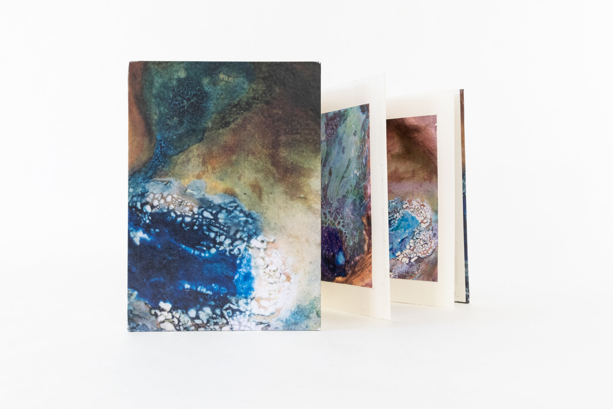 "Sandi Lent, ""Oasis,"" Artist Book/Photography, 2018, $125, Boynton Beach, FL"