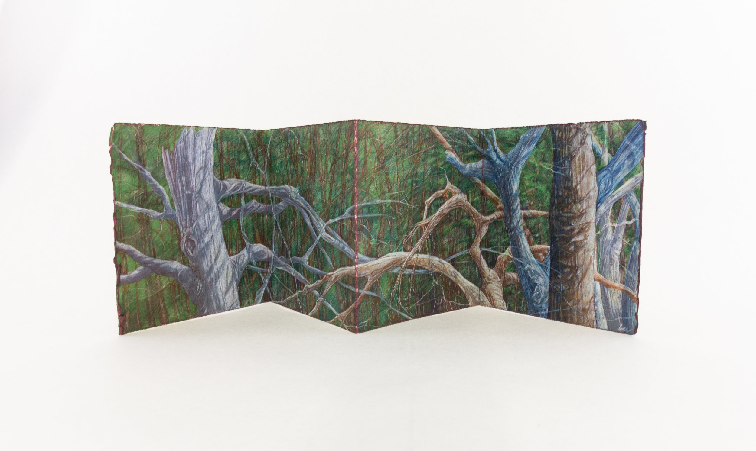 """Honore Lee, """"Wild Place,"""" Prismacolor pencil on hand-dyed paper, 2019, $150, Kalamazoo, MI"""