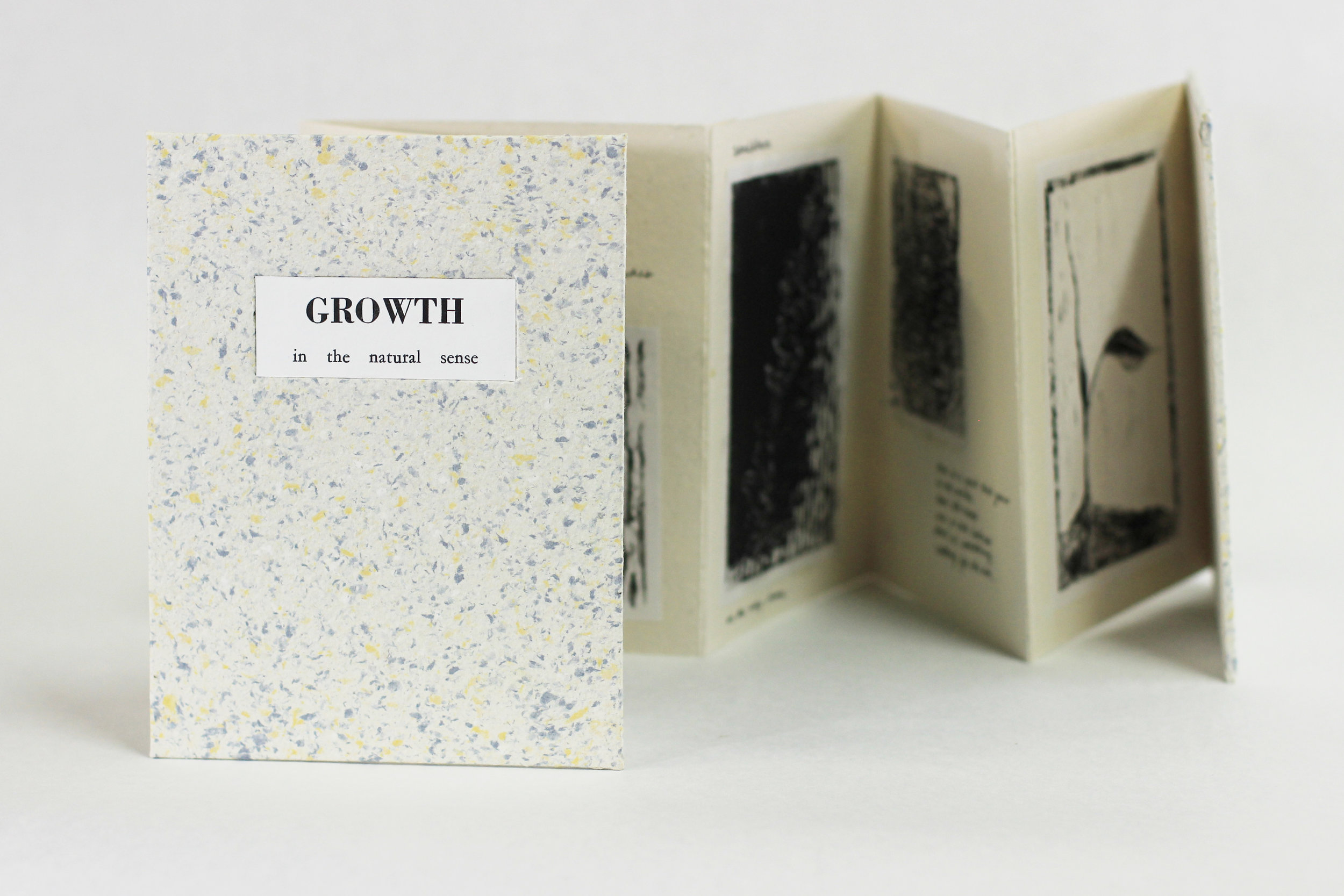 "Kelsey Cushway, Poems by Eliza Foli, ""GROWTH in the natural sense,"" pen and linocuts on handmade paper, 2019, $50, Big Rapids, MI"
