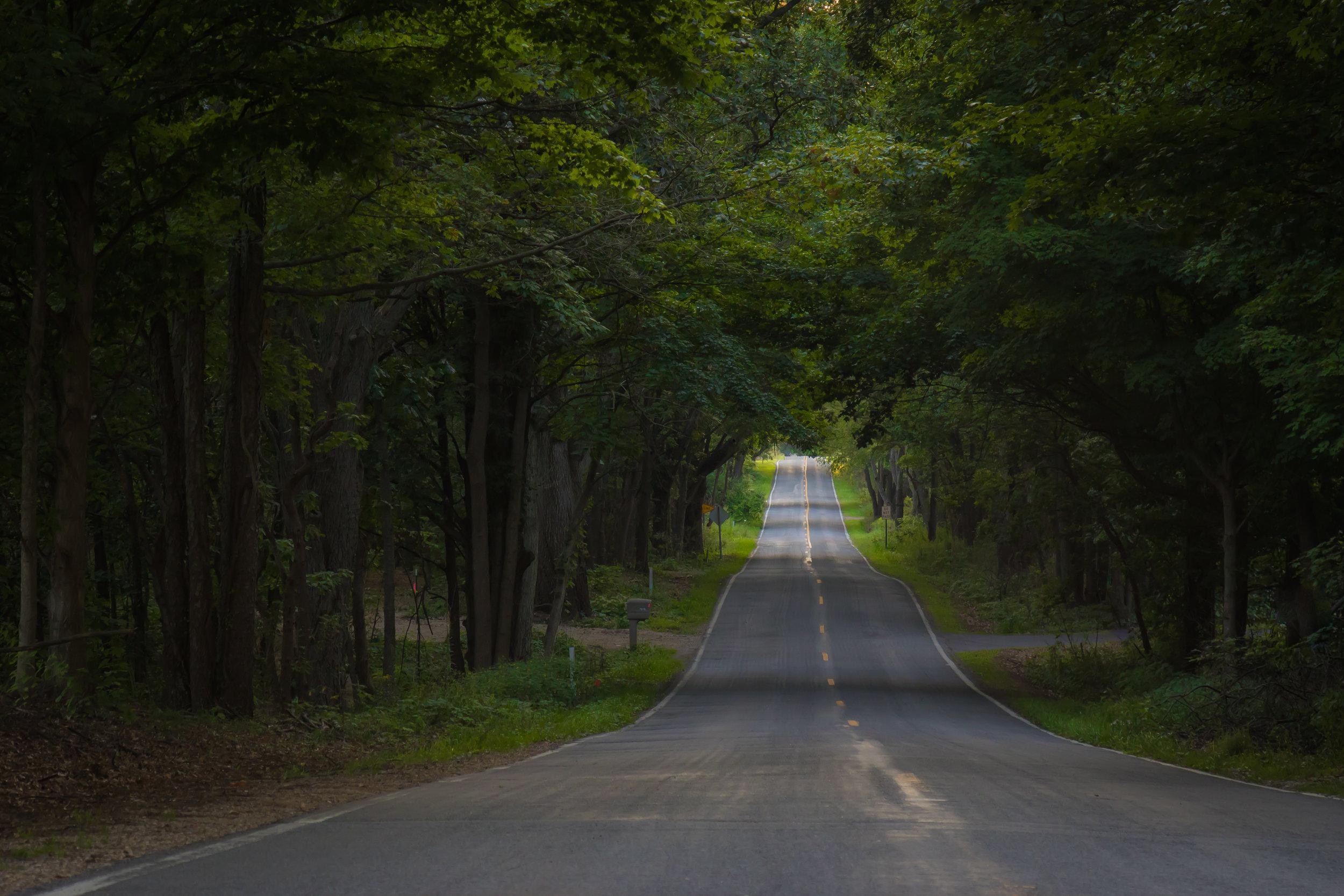 8+30+2017_MS_Road[1].jpg
