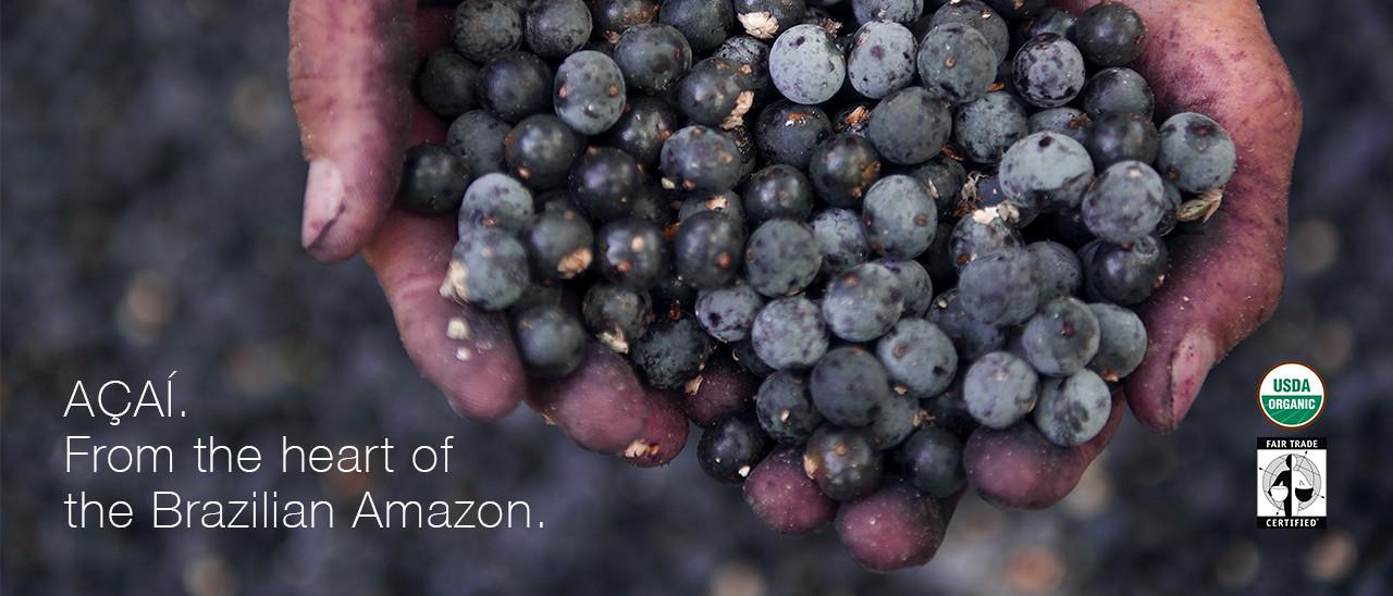 The acai berry.