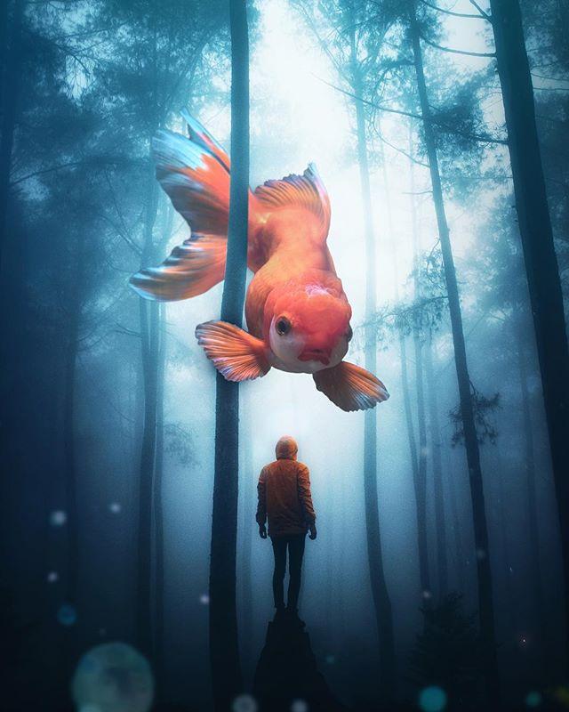 Haha it's a fish