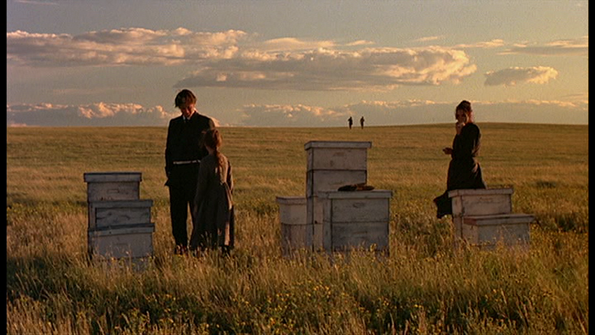 Still from Terrence Malick's  Days of Heaven