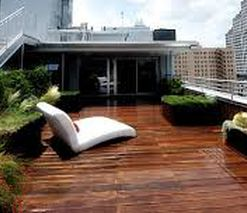 Residential & Corporate Garden Design