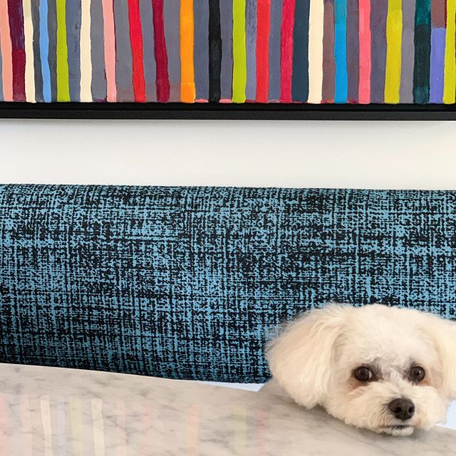 Holly can't wait to see you at the @paradeofhomestc Remodelers Showcase this weekend! ... @telosmn  @peterssenkellerarchitecture  @circagallery_mn  @veroniquewantzgallery  @sksappliances  @cambriasurfaces
