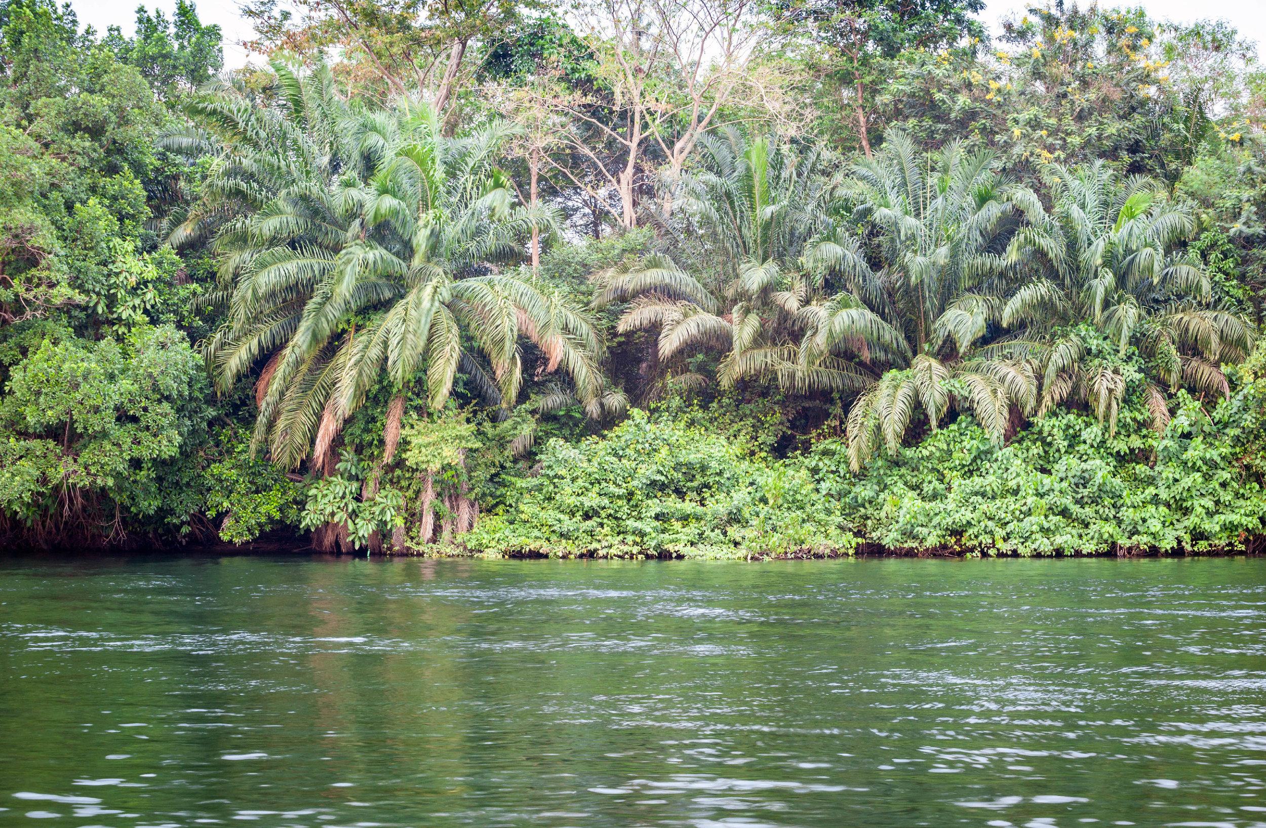 shutterstock_772829686 Ghana major river smaller.jpg