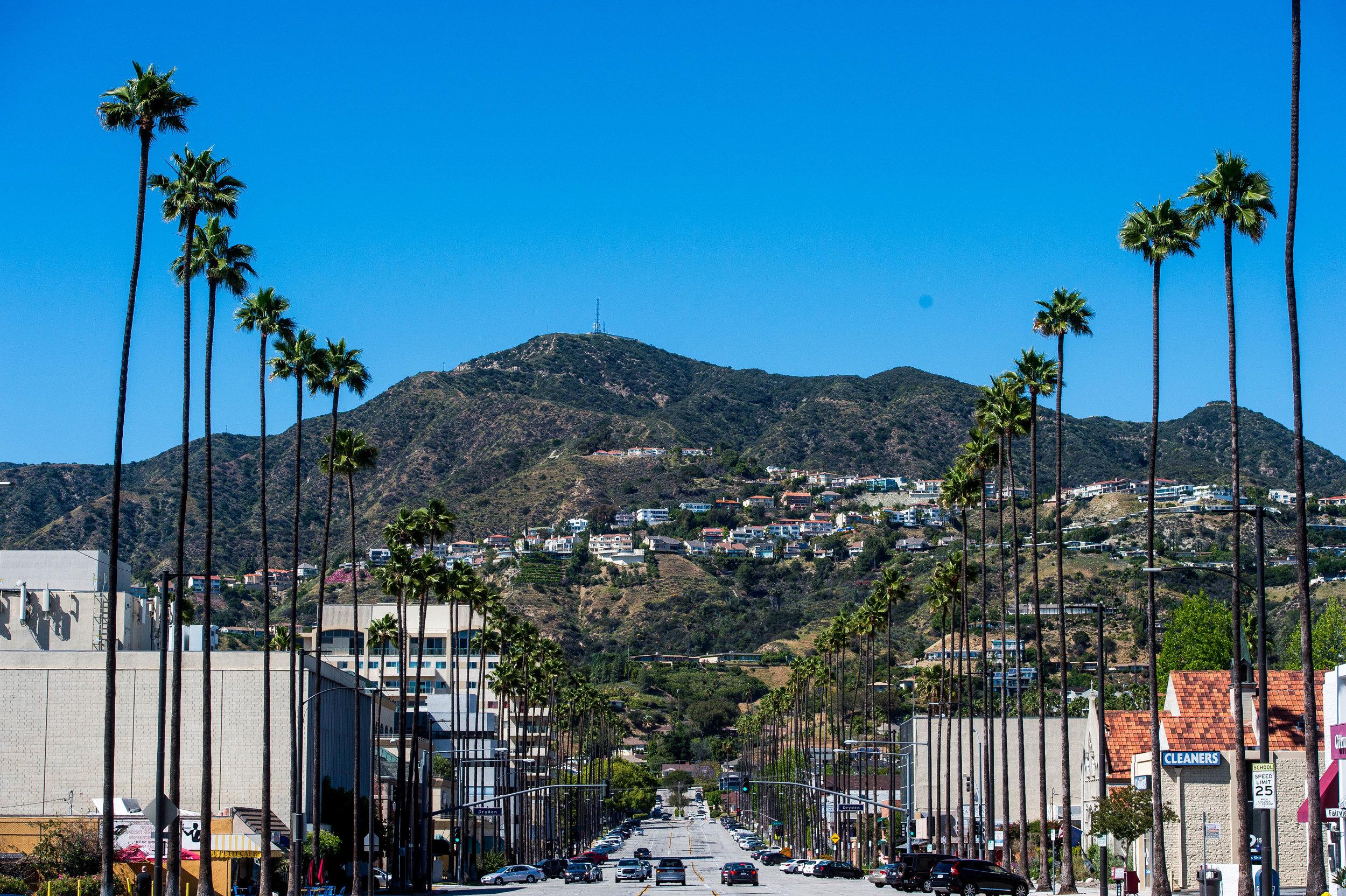 Palm tree-lined street in Glendale