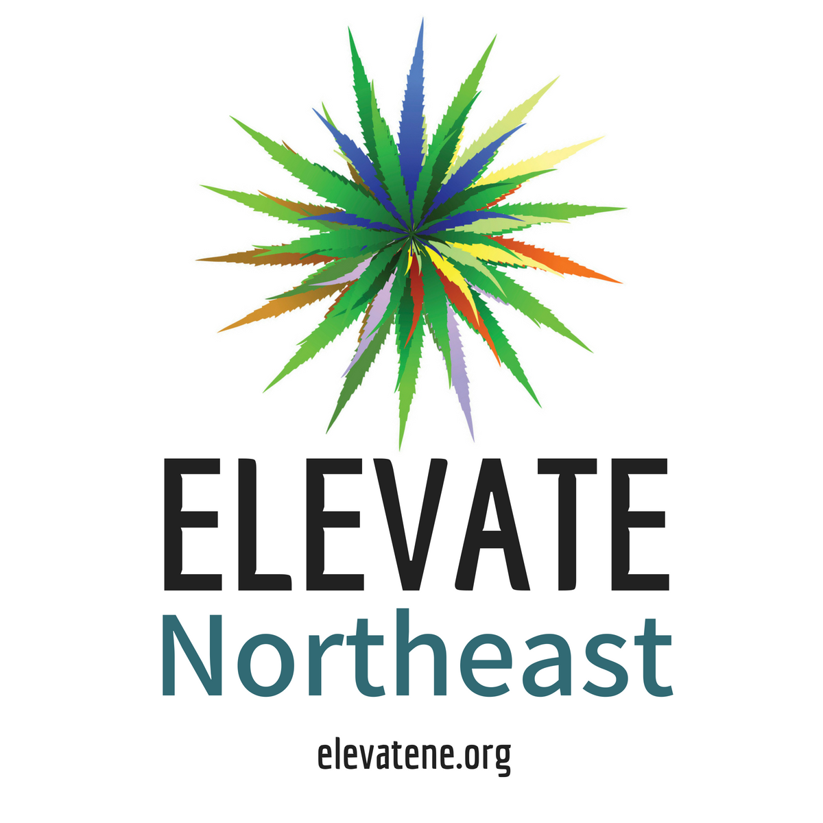 ELEVATE Stickers.png