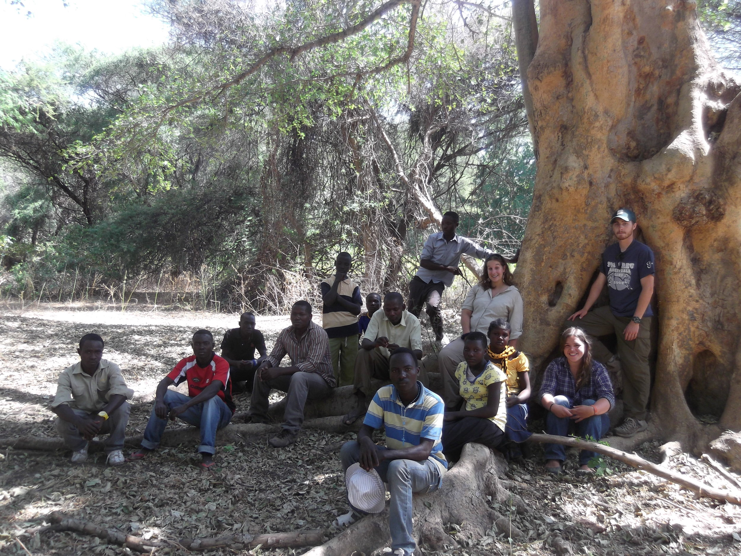 Teaching reforestation concepts to students