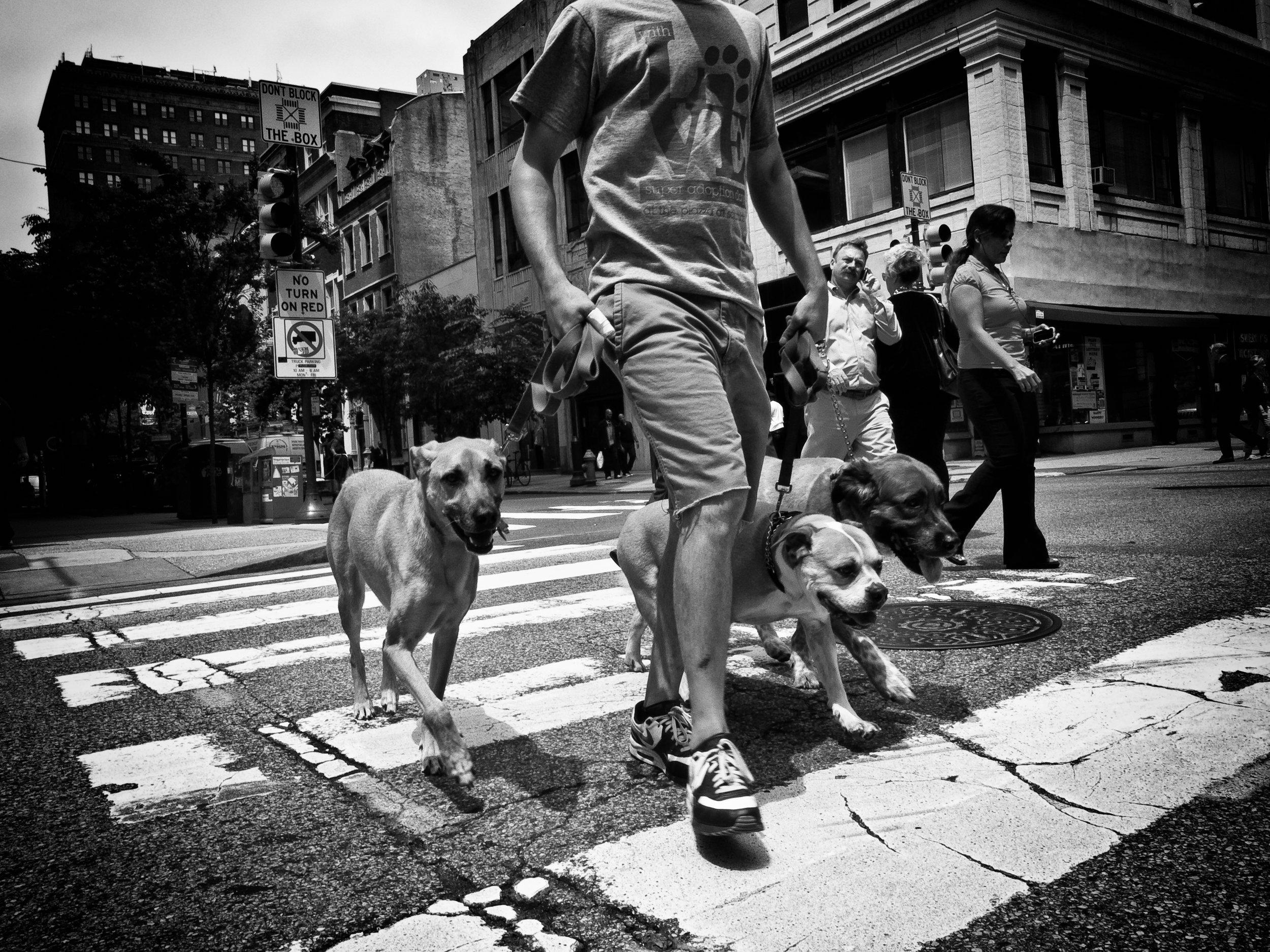 Photo By : David Oakill