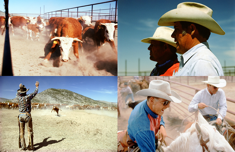 11.Cowboyspd.jpg