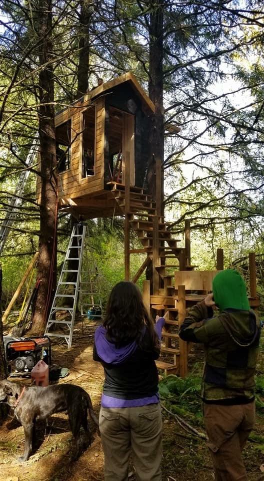 treehouse.jpeg
