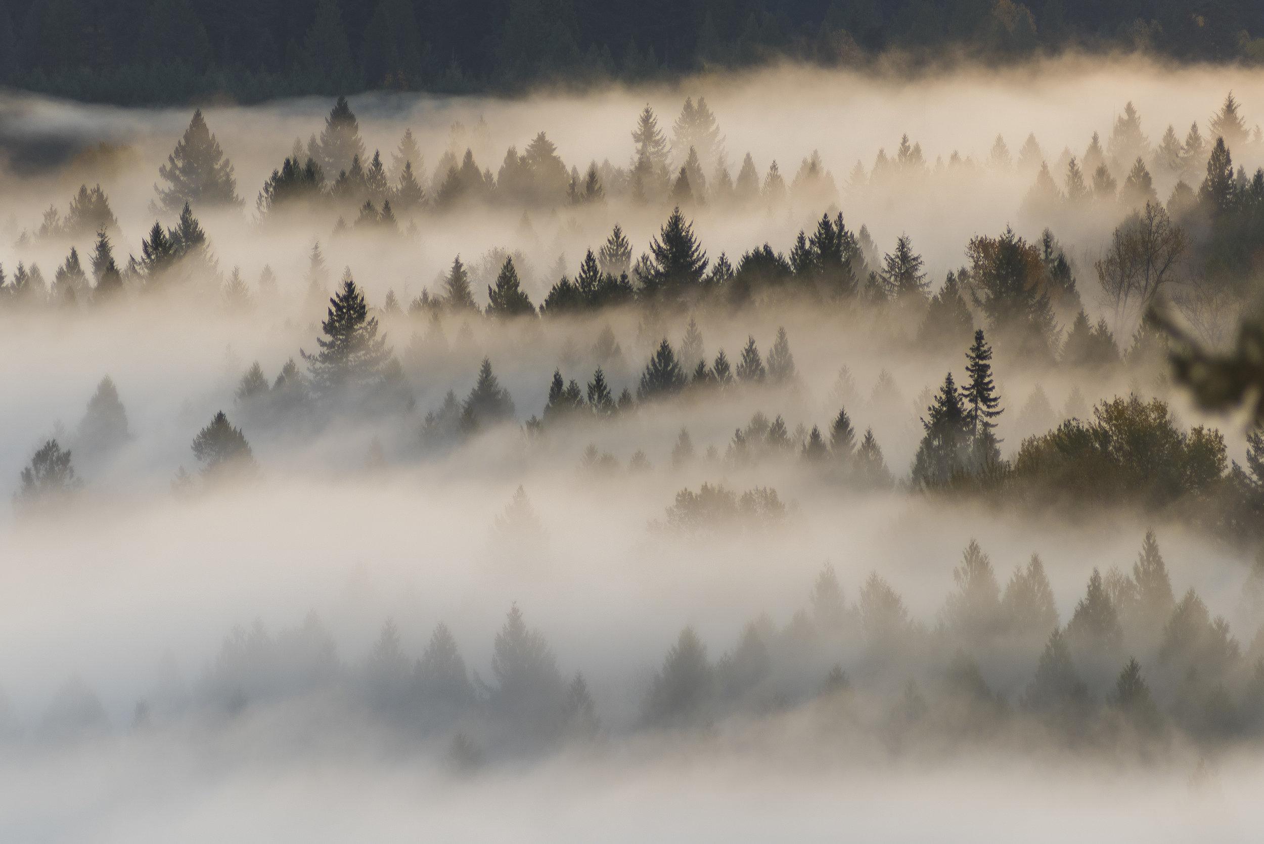 Pacific Northwest - Washington & Oregon